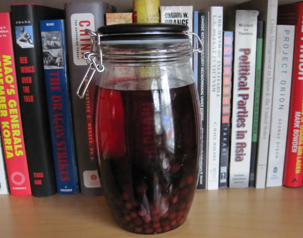 Jar full of berries and red liquid in front of books